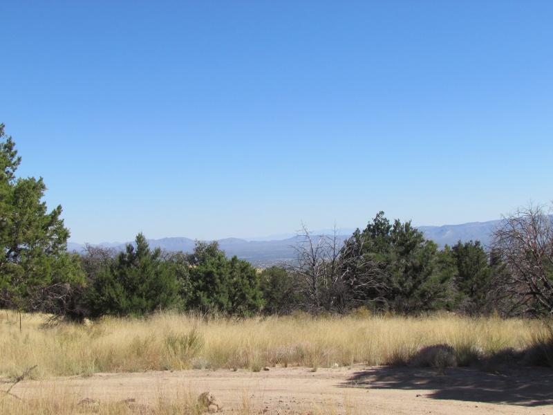 Hiking In Miller Canyon Arizona